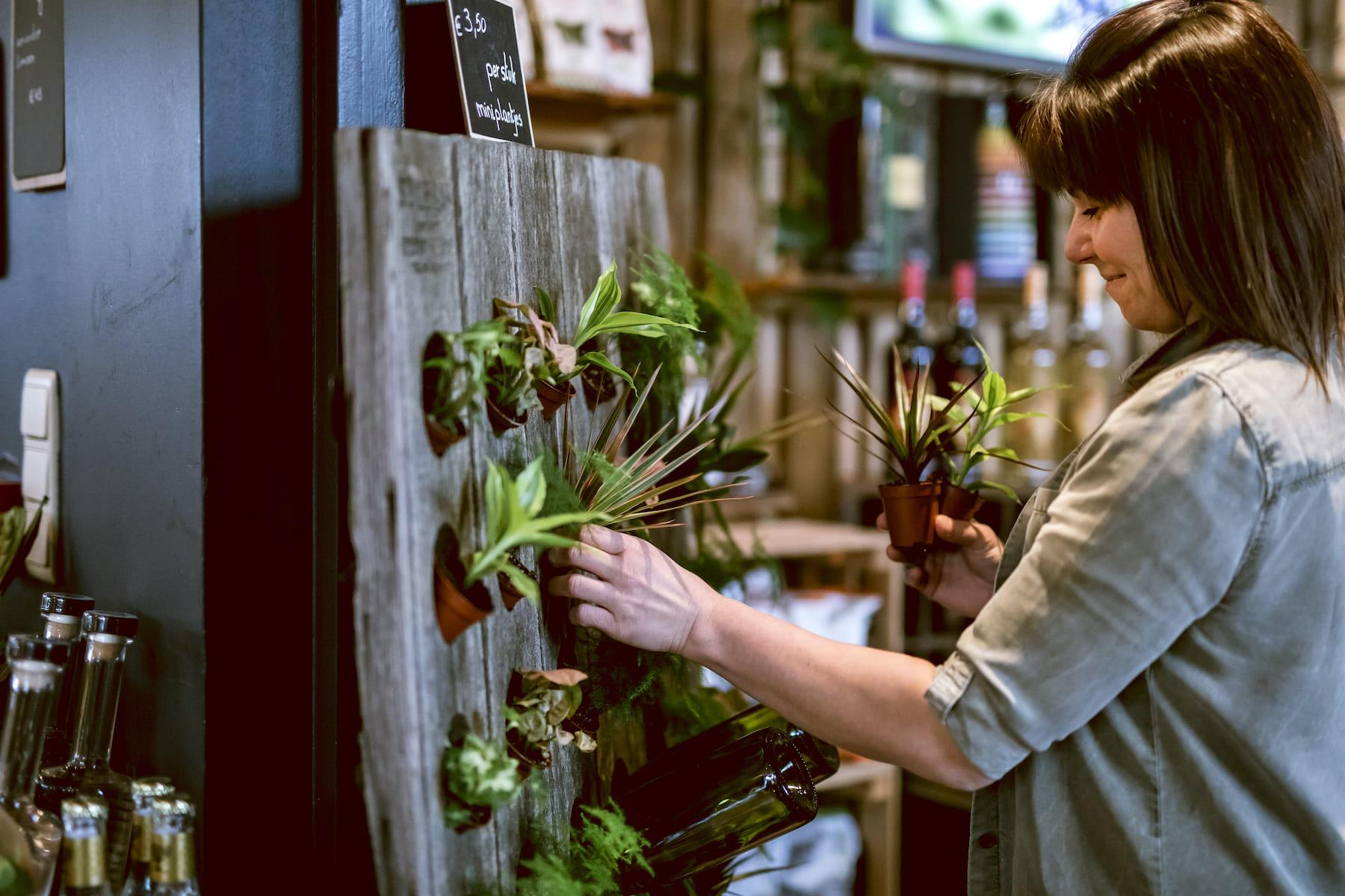 Park Ven Smaakwinkel planten decoratie Diepenbeek